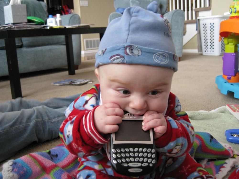 baby eating blackberry